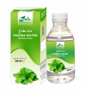 Mint Water 250 ml